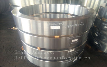 Large Stainless Steel Forging F304 F316 F51 F53 F55 F60 F321 F316Ti Hot Rolled Ring